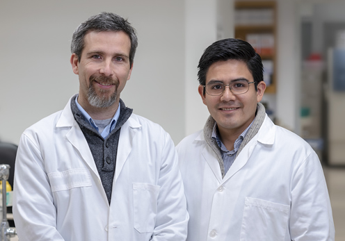 Our lab focuses on identifying and understanding the genes that play a role in neurological disorders (e.g., Parkinson's disease), with a particular focus on underrepresented populations, especially Latinos.